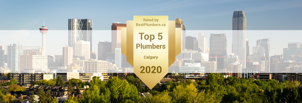 Best-Plumber-2020-Award-Website-Banner Home